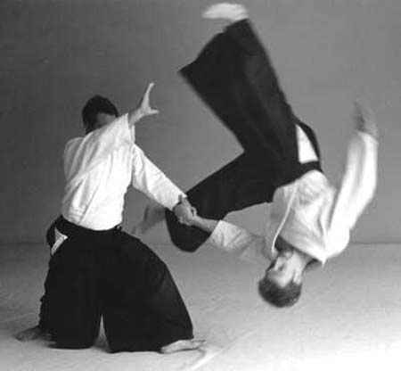 Art Of Aikido with KEnsho Furuya