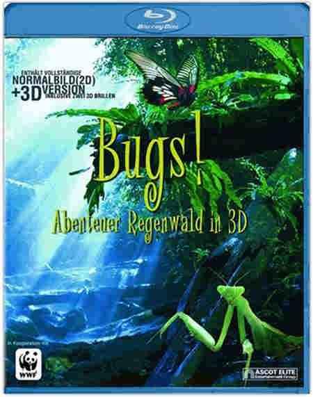 Bugs A Rainforest Adventure