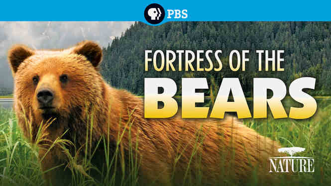 Fortress of Bears 2012