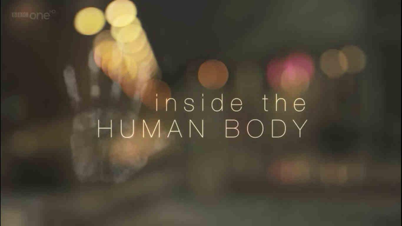 مستند درون بدن انسان- بهترین دانلود