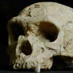 Decoding Neanderthals-index